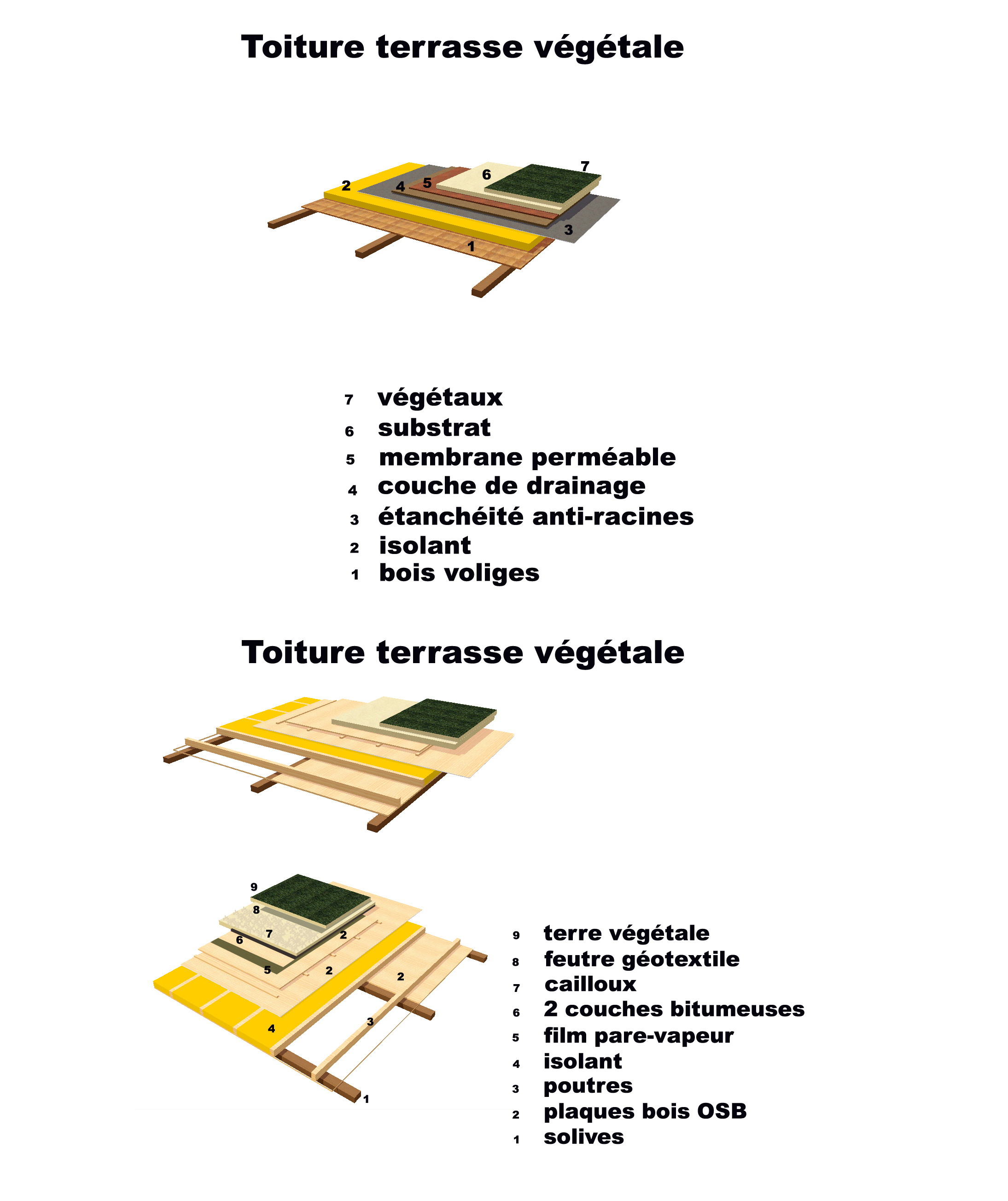 Toiture vegetale mamaisonmoderne for Toit terrasse vegetal